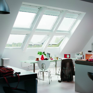 Top Hung Velux Windows