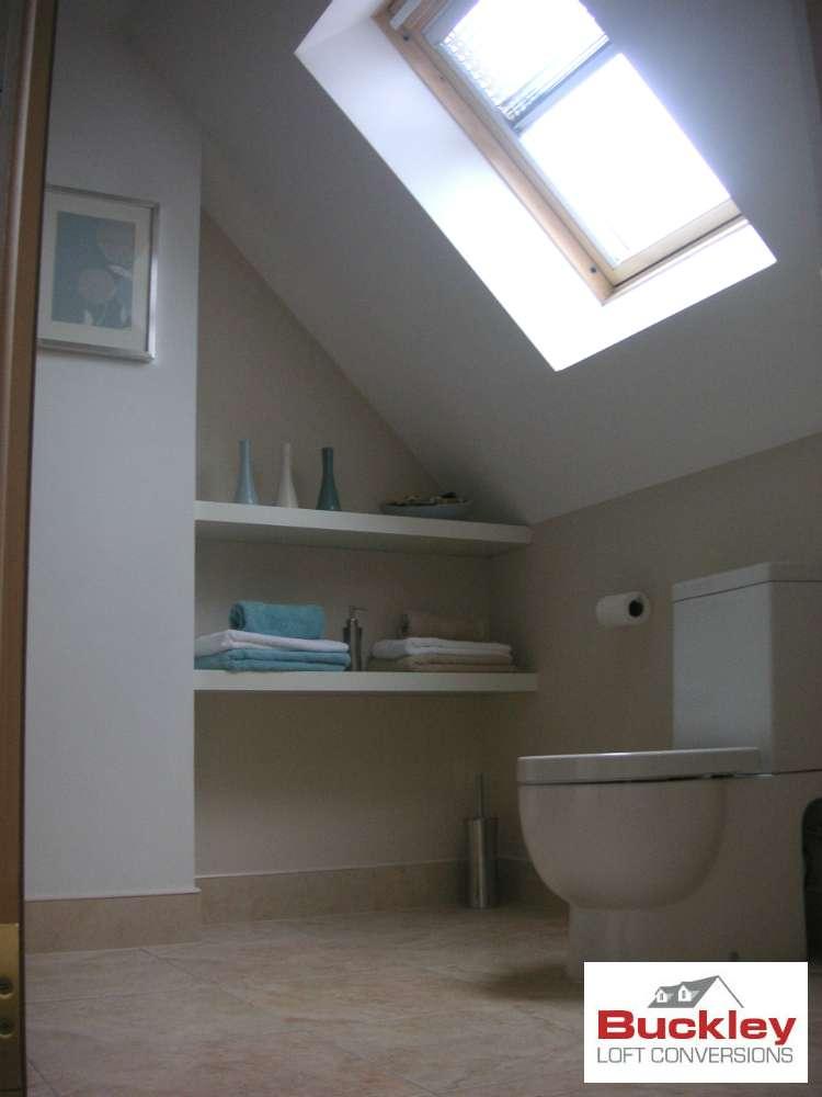 Velux Roof light En-suite in Telford